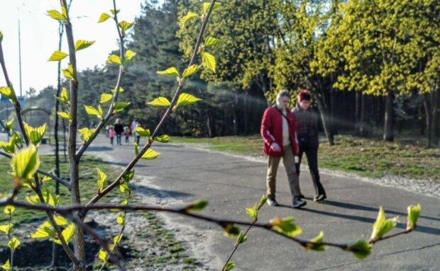 Три знаки Зодіаку почнуть нове життя вже в травні: кого чекають великі зміни