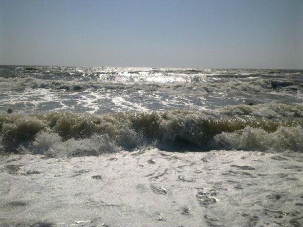 В Азовському морі неможливо підійти до води, відпочиваючі стривожені: кадри напасті