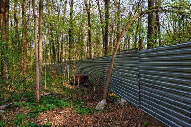 Окружение Кернеса оттяпало у харьковчан десятки гектаров Лесопарка: детали циничной схемы