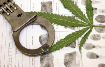 За хранение марихуаны американцев арестовывают раз в минуту