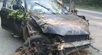 """""""Розірвало навпіл"""": четверо дітей осиротіли через випившого водія, подробиці трагедії на Тернопільщині"""