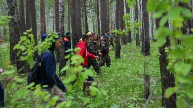 люди, лес полиция