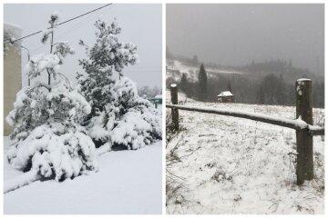 """""""Все вокруг белым бело"""": зима ворвалась в Украину и замела города снегом, чарующие фото"""