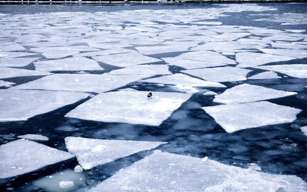 лед, льдина