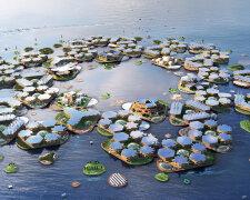 океан наука город