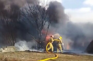 Масштабный пожар вспыхнул на Буковине: едучий дым затянул всю округу, кадры катастрофы