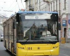 автобус львов
