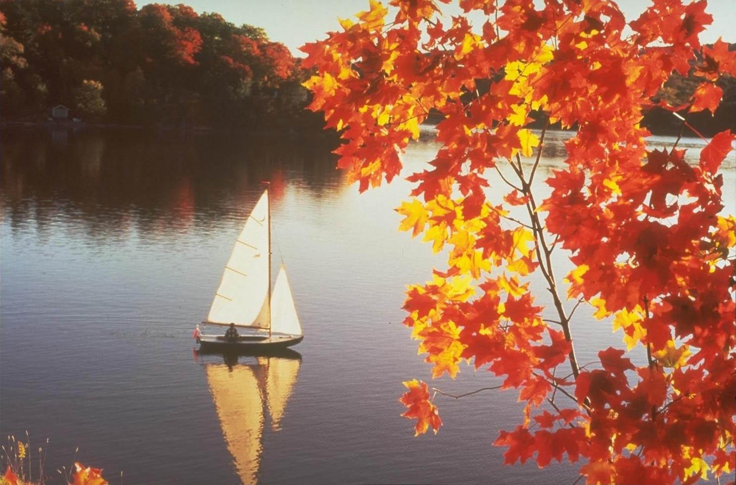 открытки осень и море что