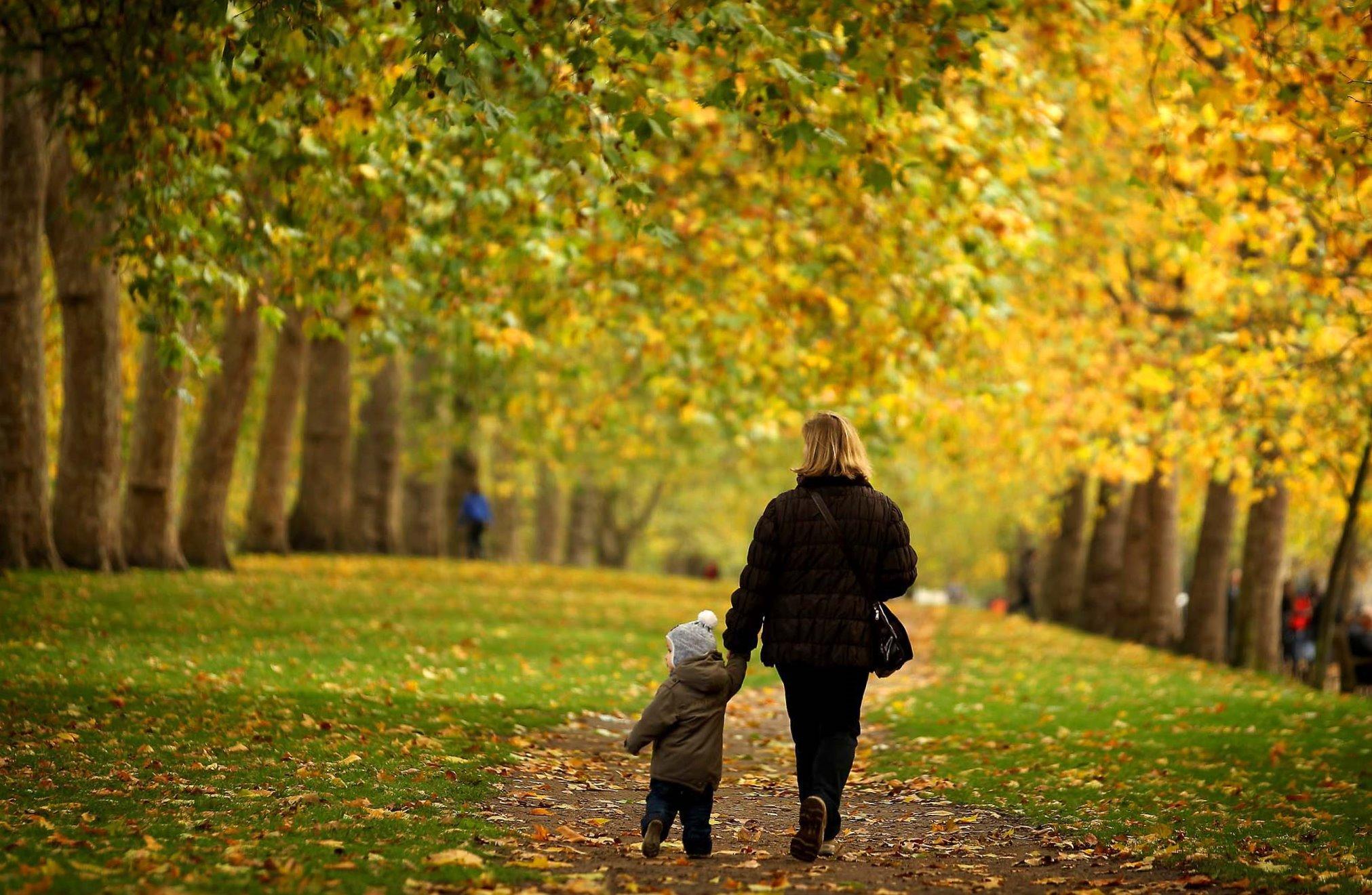 человек гуляет в парке картинка весёлыми грибами для